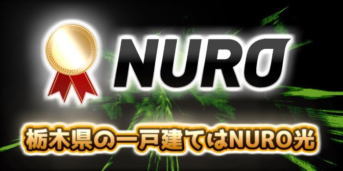 栃木県の一戸建てはNURO光が一番おすすめ
