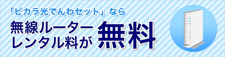 月額基本料無料【ピカラ光公式キャンペーン】