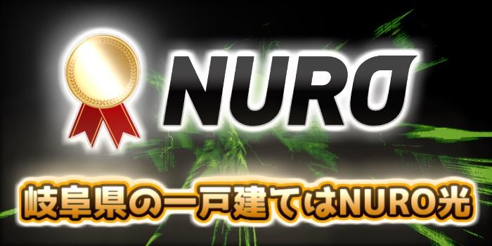 岐阜県の一戸建てはNURO光