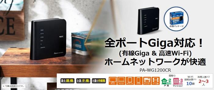 NEC PA-WG1200CR