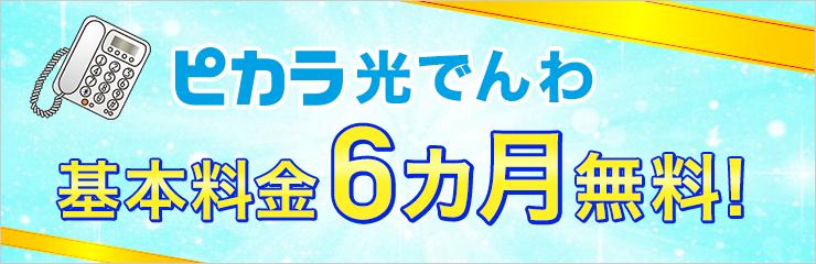 光でんわ月額基本料0円キャンペーン【ピカラ光公式キャンペーン】